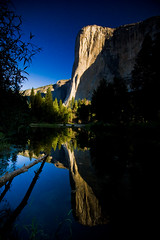 El Capitan at Sunrise (code poet) Tags: blue trees cliff mountain reflection tree green topf25 water topv111 sunrise topv555 topv333 100v10f yosemite topv777 yosemitenationalpark elcapitan 1022mm cathedralbeach
