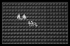 Standing Room Only (peasap) Tags: park summer arizona blackandwhite bw sun white black game hot sports computer wednesday evening team keyboard downtown alone sandiego baseball stadium empty columns picture august diamond sd rows seats padres backs spectators isolated league petco generated mlb petcopark anawesomeshot frhwofavs thesandiegopadres thepadres