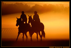 Pas De Deux (Rock and Racehorses) Tags: morning two horses horse sunlight oklahoma fog racetrack sunrise bravo duo saratoga vivid steam explore workout magical thoroughbred contrejour racehorses wonderworld magicdonkey outstandingshots fivestarsgallery mywinners mywinner outstandingshot worldbest impressiveimages sarahandrew spectacularelite sarahkandrew choose5 choose1 choose2 choose3 choose4