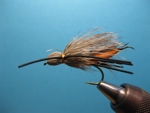 STALCUPS SALMON FLY
