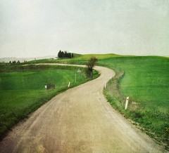 ~ Country road ~ (*Marta) Tags: green field vintage countryside hills campagna tuscany fields toscana rollinghills textured tranquilscene oldfashoned