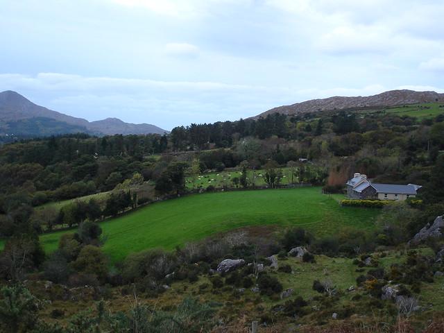 Ireland 2010 090
