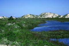 Florianpolis SC (kaleonel) Tags: sc florianpolis paisagem karen dunas leonel karenleonel kaleonel