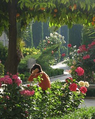 leyendo en el jardn (Guervs) Tags: espaa garden andaluca spain andalucia jaen andalusia spanien jan jardn baeza spagne challengeyouwinner scoremefast ltytr1 favoritegarden superhearts flickrphotoaward superlativas thatsclassy naturallyartificial