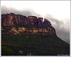 Tepuy Yuruani (David D. Bernrdez) Tags: nature canaima montaa viajar tepuy lagransabana travelnaturaleza