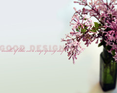 Good Design: Smell (Something To See) Tags: pink green graphics lilac vase wallpapers gooddesign alledgesstilllife