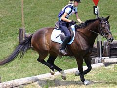 Groton House 30 (Ropeferry) Tags: horse crosscountry threedayevent horsetrials girlriding grotonhouse