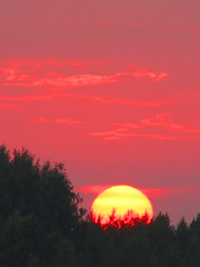 Red sky (Vaeltaja) Tags: trees sunset red summer sky sun yellow forest suomi finland august oulu mets kes auringonlasku aurinko punainen puut taivas elokuu keltainen kuivasjrvi mywinners ke