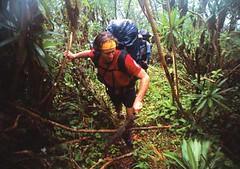 Climbing Kenya