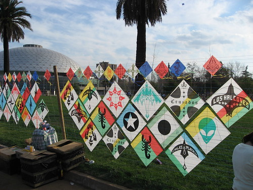 Rows of kites for sale