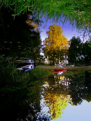 Heavenly grass (Per Ola Wiberg ~ Powi) Tags: trees nature water reflections september harmony shiningstar 2007 musictomyeyes mlaren waterreflections upanddown earthnature supershot eker imagepoetry theoldport contactgroup flickrsmileys themagiceye flickrhearts isawyourfirst superbmasterpiece flickrbronzeaward flickrsilveraward flickrsun jungfrusund flowersandgarden dazzlingshots flickridol awesomepictureaward thebestshot spiritofphotography colourvisions beautifulshot photographersgonewild naturesphotos grouptripod extendelement grrreatworks doubledragonawards naturegreenstar naturescreations oohlalapictures artofimages dragonflyawardsgroup zensationalworld visionaryartsgallery photographersworldbestfriends visualconsept oracope goldenplanet naturesprime supremeimages platinumplanet bestpeopleschoice zodiacawards mithopeesperana creativephotographeronflickr esenciadelanaturaleza fotografaynaturalezabronze whaticallart aboutthenaturewithlove chariotsofartists