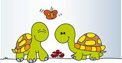 Imagenes tortugas enamoradas - Imagui