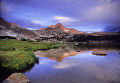 Twenty Lakes Basin (copeg) Tags: flowers lake reflection nature clouds forest sunrise high shoreline lakes meadow basin sierra national hoover wilderness twenty greenstone inyo naturesfinest diamondclassphotographer flickrdiamond sierravisions