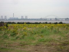 View across the Mersey to Fiddlers' Ferry and Runcorn Bridge (LiverpoolRover) Tags: mersey runcornwidnesbridge fidlersferry