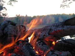 Need to Warm Up? (akahodag) Tags: trees fire backyard logs campfire heat breathtaking coals anawesomeshot aplusphoto