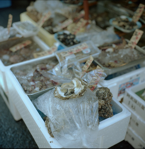 Oyster Market