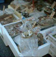 Oyster Market (fukui_norisuke) Tags: japan tokyo market kodak fishmarket rolleiflex28f portra400vc tukiji chuouku