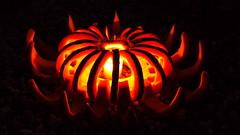 Different (smashz) Tags: art halloween pumpkin jackolantern kahn stanford smashz
