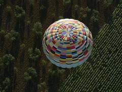 Cómo montarse en globo y no morir en el intento | Sobrevolar Sevilla es un deporte de riesgo ceslava 6