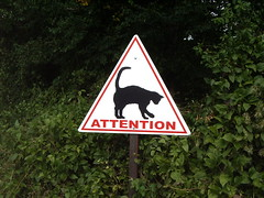 Panneau attention au chat (philoo 14) Tags: 15fav signs france strange animal sign topv111 danger cat warning geotagged topv333 funny chat topv1111 pussy lot kitty humour topv222 gato roadsign roadsigns unusual signalisation pancarte gatto pericolo katz insolite rigolo divertente micio drole gattino drle midipyrnes panneauroutier panneaudesignalisation kattene signalisationroutiere geo:lat=44746596 geo:lon=1755688 issendolus saintchignes attentionauchat philoo