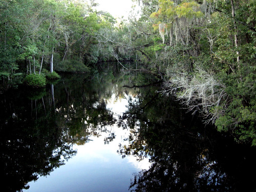 black creek 1