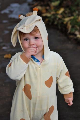 Giraffe boy