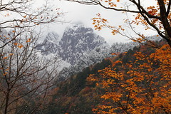 The End of Autumn (Teruhide Tomori) Tags: travel mountain snow alps nature japan landscape foggy gifu hida  naturescene  japanalps  okuhida   kitaalps
