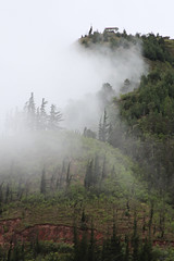 Mist on the Hillside Photo