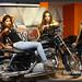 Harley-Zahlen im ersten Dreivierteljahr - zu Hause pfui, im Libanon hui