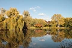 Park in Roermond (Waterjuffer1) Tags: park water herfst nederland lucht roermond limburg landschap maasniel nietbewerkt waterjuffer1