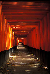 fushimi inari,  (minimalized) Tags: leica wood light red beauty japan architecture japanese kyoto shrine path perspective zen  tori  fushimiinari   leicam  lightinarchitecture minimalized
