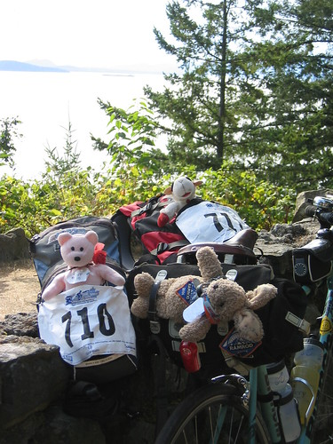 The Stuffies on Chuckanut Drive