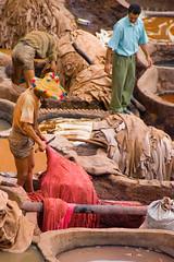Morocco (dominikgolenia) Tags: nikon morocco hide fez nikkor 18200 vr fes tannery maroko d80