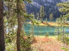 Virginia Lake color