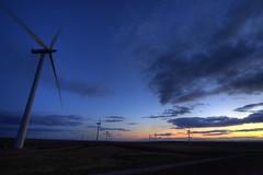 Sundown at Windfarm