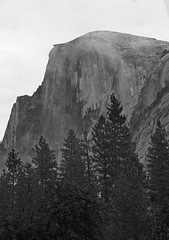 Half Dome in Mist (B&W)