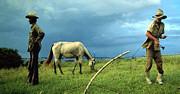 agricultores-cubanos-z