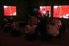 documenta 12 | Amar Kanwar | 2007 | Neue Galerie
