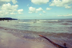 Pointing Wood (TimTim74) Tags: wood blue sea summer sky beach wet clouds sand warm waves sweden driftwood bstad
