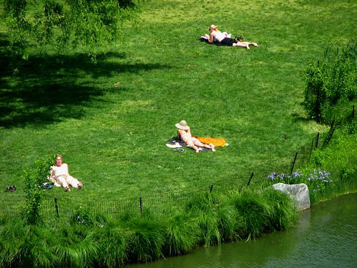 sunbathers in central park ny. sunbathers in central park ny.