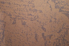 Drybrush (Lady T 220) Tags: bedroom paint decorating walls emptyspace