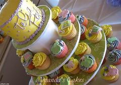 Baby Telia Rae overshot (mandotts) Tags: pink baby green yellow cupcakes lavender clothes babygirl cupcake onesies babyshower babybottle babyblanket babyclothes babycakes babyshowercake babyshowercupcakes babyrattle