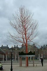 netherlands 066