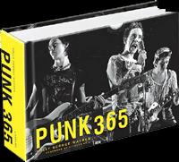 punk 365 for blog