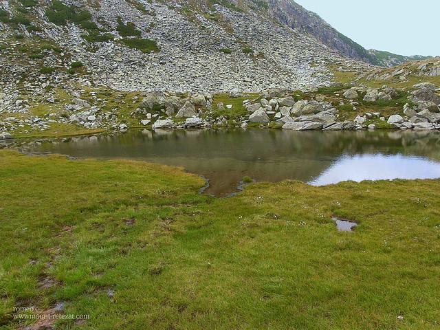 Zanoagele Galesului (3)