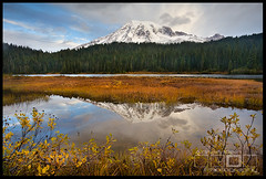 Silent Reflections - Mount Rainier National Park (Adrian Klein) Tags: blue orange mountain lake reflection green fall yellow fog forest washington solitude paradise peaceful calm rainier freshsnow adrianklein