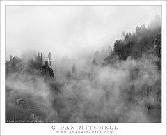 Trees, Cliffs, and Clouds (G Dan Mitchell) Tags: california park travel autumn trees blackandwhite cliff usa cloud mist mountain storm fall nature monochrome silhouette rock fog forest season landscape nevada stock scenic sierra spire alpine national valley yosemite northamerica rim range drift induro