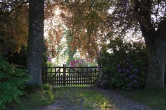 A Garden Gate (Lets Bike It (Howard D Mattinson in Canonbie)) Tags: garden gate stock driveway stockphoto stockphotography canonbie stockfoto hdmattinson howarddmattinson