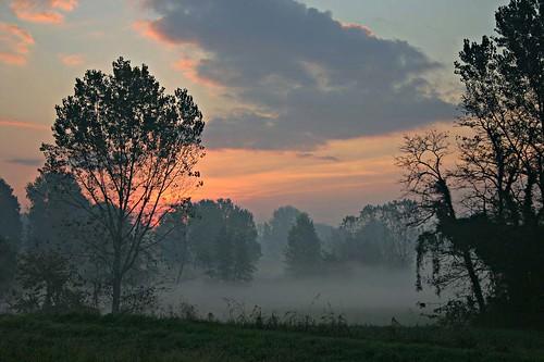 alba tra la nebbia da pietroomar.