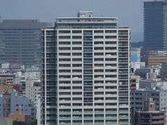 DSCF3072.JPG (piouhgd) Tags: sendai matsushima 2007081921
